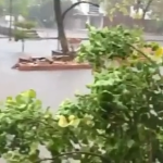 Emergencia en 13 sectores y una persona fallecida, balance de las fuertes lluvias registradas en Cartagena